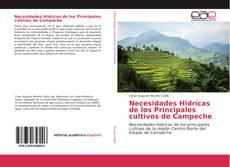 Обложка Necesidades Hidrícas de los Principales cultivos de Campeche