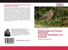 Copertina di Endoscopía en Fauna Silvestre Caso del Zarapito y el anzuelo