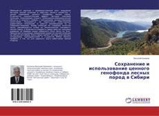 Buchcover von Сохранение и использование ценного генофонда лесных пород в Сибири
