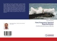 Time Frequency Spectral Representation kitap kapağı