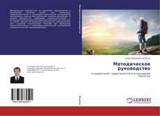 Bookcover of Методическое руководство
