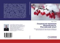 Bookcover of Социально-правовая безопасность. Российский опыт