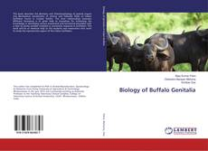 Bookcover of Biology of Buffalo Genitalia