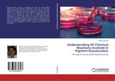Bookcover of Understanding Of Chemical Reactions Involved In Pigment Discoloration