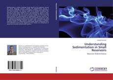 Bookcover of Understanding Sedimentation in Small Reservoirs