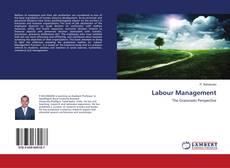 Buchcover von Labour Management