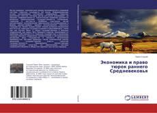 Экономика и право тюрок раннего Средневековья kitap kapağı