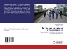 Обложка Трудовая миграция в Кыргызстане