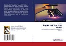 Buchcover von Пористый фосфид индия