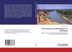 Обложка The Future of Omo River in Ethiopia