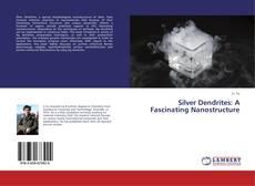 Couverture de Silver Dendrites: A Fascinating Nanostructure