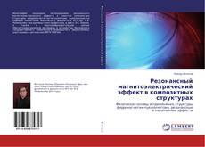 Обложка Резонансный магнитоэлектрический эффект в композитных структурах