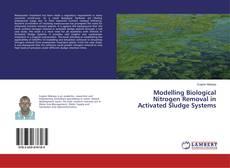 Modelling Biological Nitrogen Removal in Activated Sludge Systems kitap kapağı