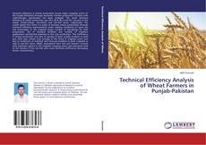 Bookcover of Technical Efficiency Analysis of Wheat Farmers in Punjab-Pakistan