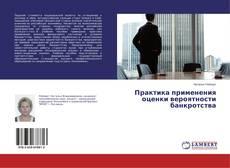 Buchcover von Практика применения оценки вероятности банкротства
