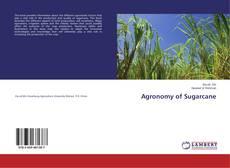 Agronomy of Sugarcane的封面
