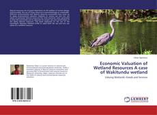 Bookcover of Economic Valuation of Wetland Resources A case of Wakitundu wetland