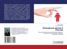 Bookcover of Пожарные риски в России