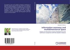 Copertina di Information economy and multidimensional space