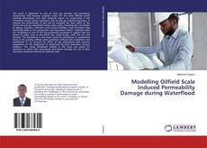 Bookcover of Modelling Oilfield Scale Induced Permeability Damage during Waterflood