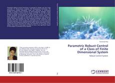 Bookcover of Parametric Robust Control of a Class of Finite Dimensional System