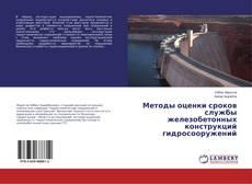 Методы оценки сроков службы железобетонных конструкций гидросооружений kitap kapağı