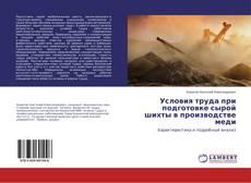 Buchcover von Условия труда при подготовке сырой шихты в производстве меди