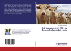 Borítókép a  Risk assessment of TADs in Borena bulls market chain - hoz