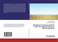 Bookcover of Adapting Cropping Systems under Changing Climate in NW Bangladesh
