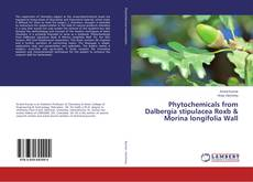 Bookcover of Phytochemicals from Dalbergia stipulacea Roxb & Morina longifolia Wall