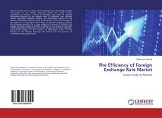 Copertina di The Efficiency of Foreign Exchange Rate Market