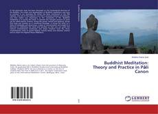 Copertina di Buddhist Meditation: Theory and Practice in Pāli Canon