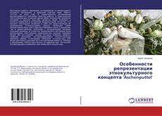 Bookcover of Особенности репрезентации этнокультурного концепта 'Aschenputtel'