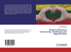 Bookcover of Boston Lithuanian Community: Challenges and Opportunities