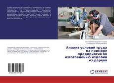 Bookcover of Анализ условий труда на примере предприятия по изготовлению изделий из дерева