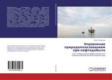 Bookcover of Управление природопользованием при нефтедобыче