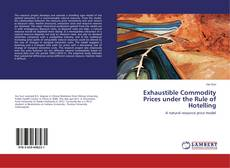 Bookcover of Exhaustible Commodity Prices under the Rule of Hotelling