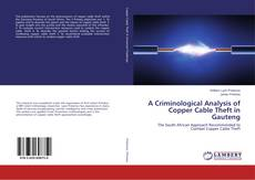 Обложка A Criminological Analysis of Copper Cable Theft in Gauteng