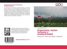 Ergonomía, factor humano y productividad的封面