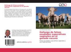Hallazgo de falsos exudados supurativos vaginales en el ganado vacuno
