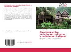 Обложка Dicotomía entre jurisdicción ordinaria y jurisdicción indígena