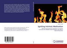 Bookcover of Igniting Intrinsic Motivation