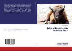 Bookcover of Зубр в Кавказском заповеднике