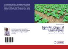 Bookcover of Production efficiency of tobacco smallholders in western Uganda: