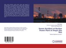 Bookcover of Severe Accident at Nuclear Power Plant of Angra dos Reis