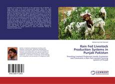 Bookcover of Rain Fed Livestock Production Systems in Punjab Pakistan