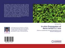 Bookcover of In-vitro Propagation of Aerva lanata (L.) Juss
