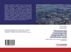 Bookcover of Технология скважинной гидродобычи железных руд