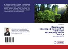 Bookcover of Комплексы ксилотрофных грибов основных лесообразующих пород