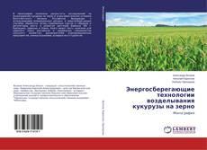 Bookcover of Энергосберегающие технологии возделывания кукурузы на зерно